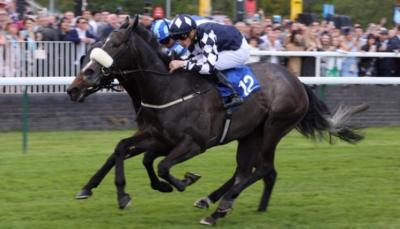 Queen Jo Jo wins Kilvington Stakes